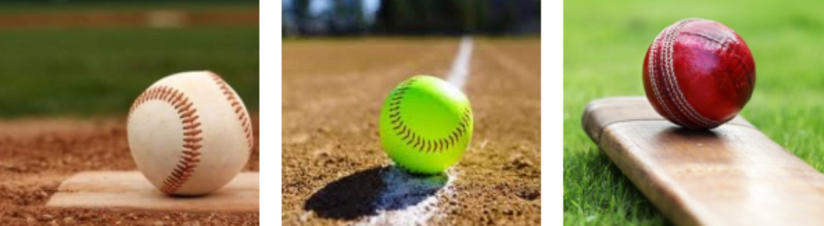 PUC Baseball Softball Cricket | Site officiel